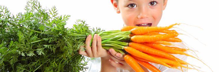 seminario-alimentacion-vegetariana