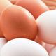 huevos-destete